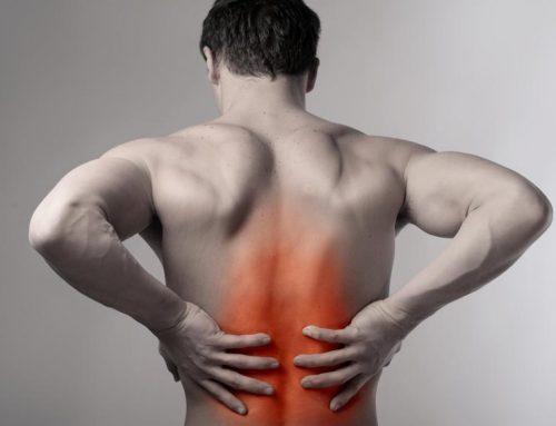 Piccolo manuale per una schiena in salute